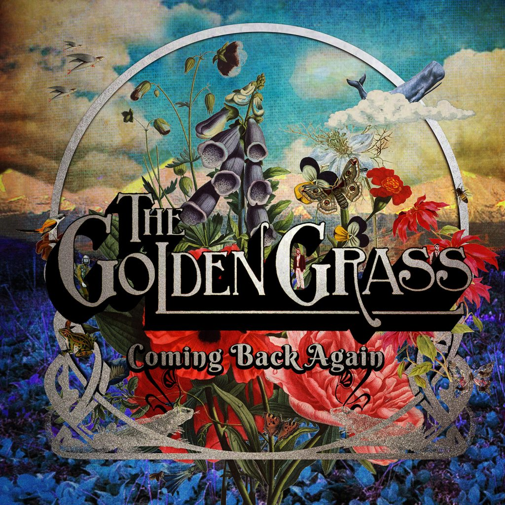 THE GOLDEN GRASS Come Back Again cover
